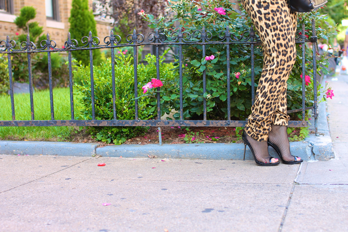 leopardpants3