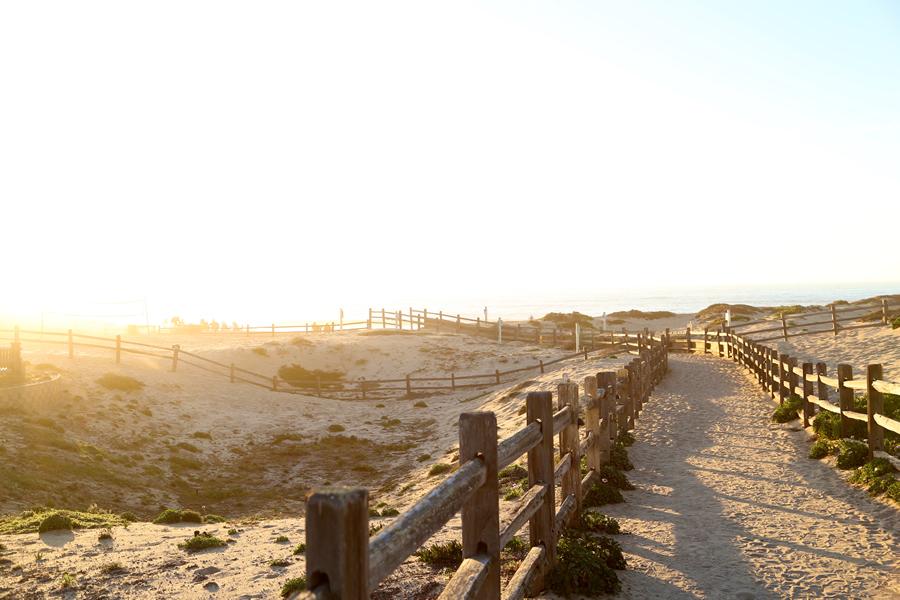 beachescape2